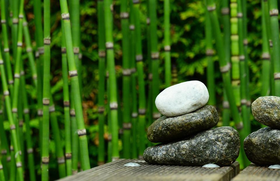 bamboo-gardens