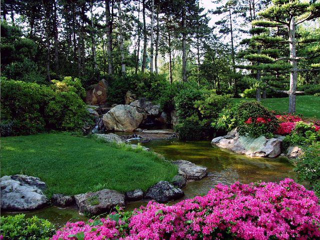 botanical-garden-landscape
